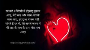 Read more about the article Love Shayari in Hindi for girlfriend with image HD