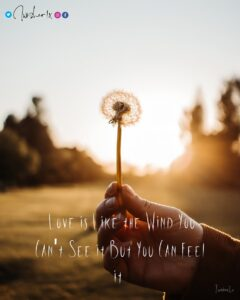 Read more about the article Love is like the Wind You Can't See it But You Can Feel it  . . @iwisher1x . . #