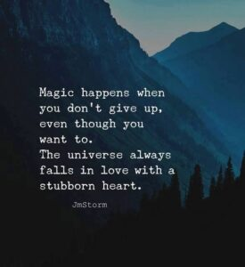 Read more about the article The universe always falls in love with a stubborn heart