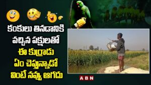 Read more about the article Boy Funny Conversation With Birds in Sweet Corn Fields   Viral Video   Telugu Comedy Videos   ABN