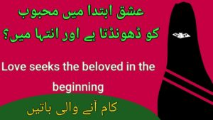 Read more about the article Ishq Ibteda Mn,Beautiful Quotes In Urdu,Amazing Collections Of Urdu Quotes,Motivational Hindi quotes