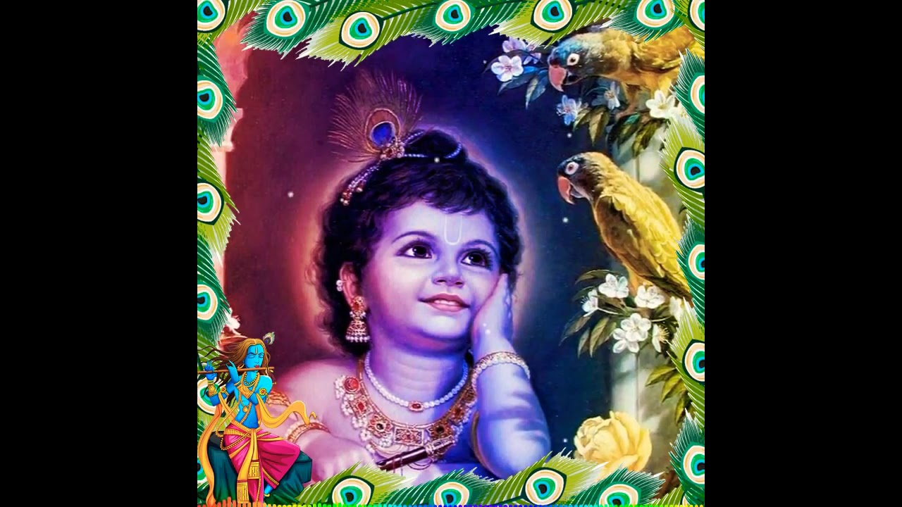 You are currently viewing Lord Krishna Tamil Status || Krishna Jayanti Status Tamil || Krishna WhatsApp Status