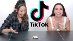 Read more about the article Trying Viral TikTok Challenges – Merrell Twins