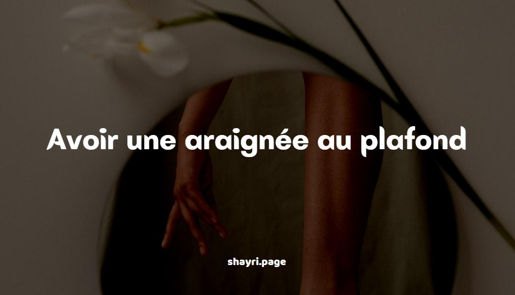 You are currently viewing Avoir une araignée au plafond-French Quotes