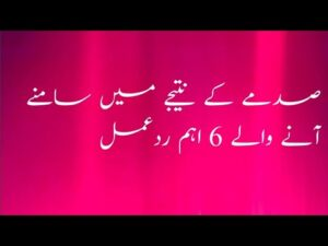 Read more about the article Best urdu quotes| voice quotes urdu hindi| moral quotes| wisdom words